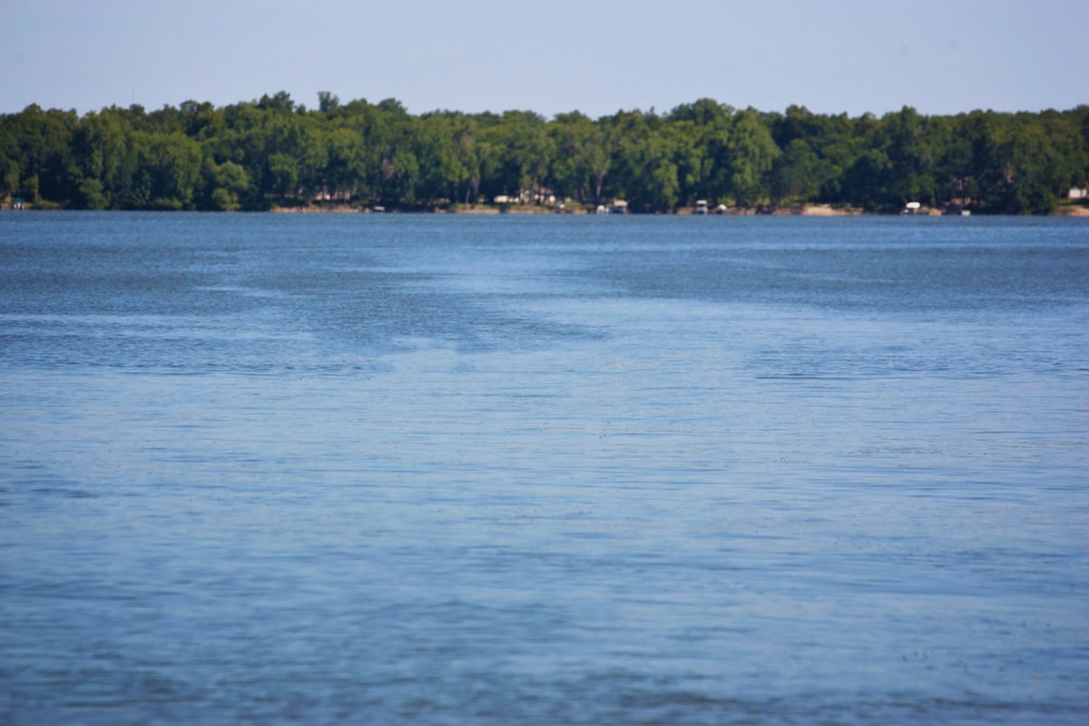 Picture of Norway Lake, MN Shoreline